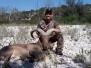 Exotic Hunts